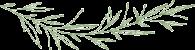 bg-leaves-green